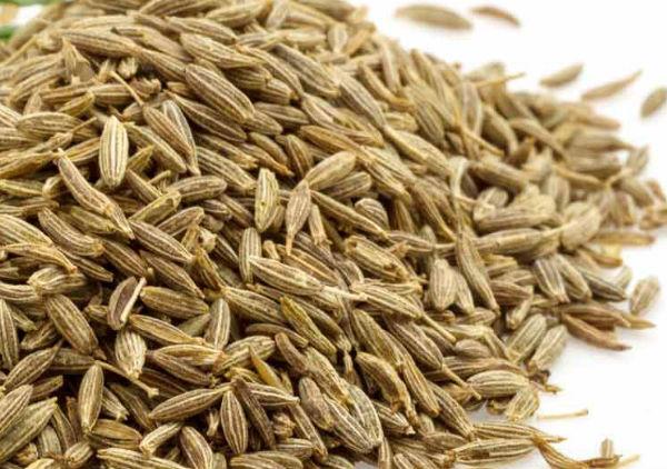Cumin Seed Oil (Jeers)